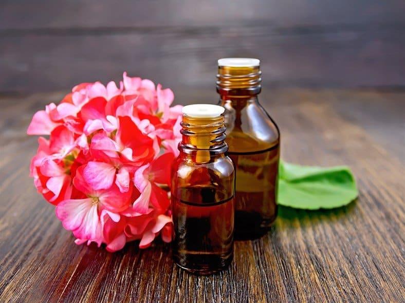 geranium essential oil bottles and flower