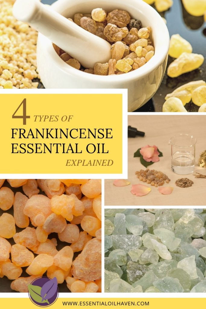 Frankincense Essential Oil Varieties