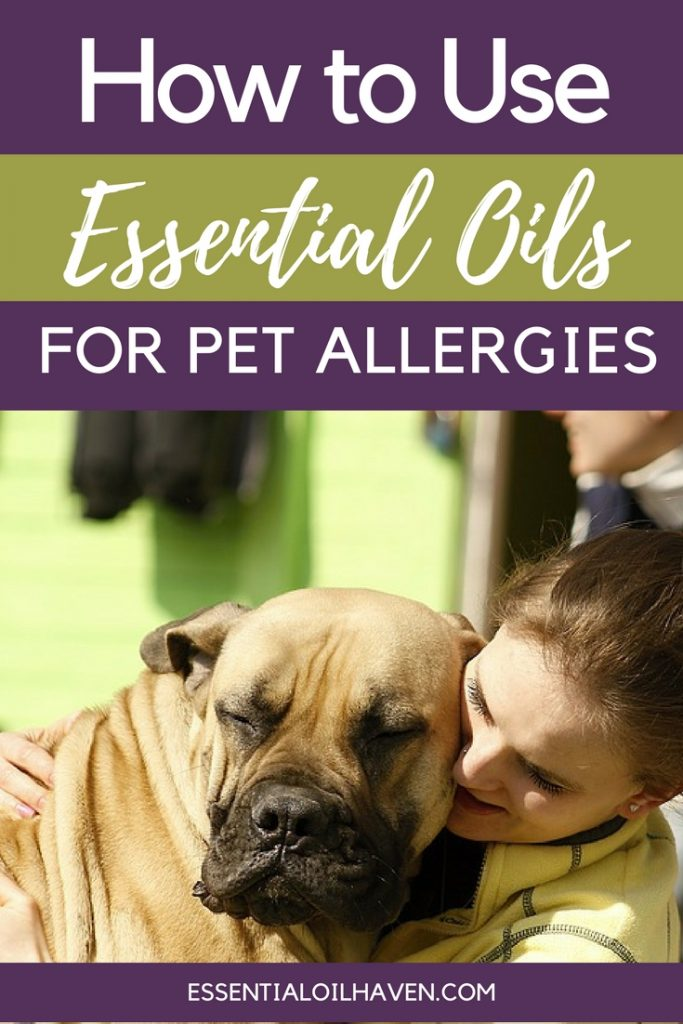 how to use essential oils for pet allergies