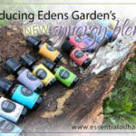 My now foods essential oils review a must read Edens garden essential oils coupon