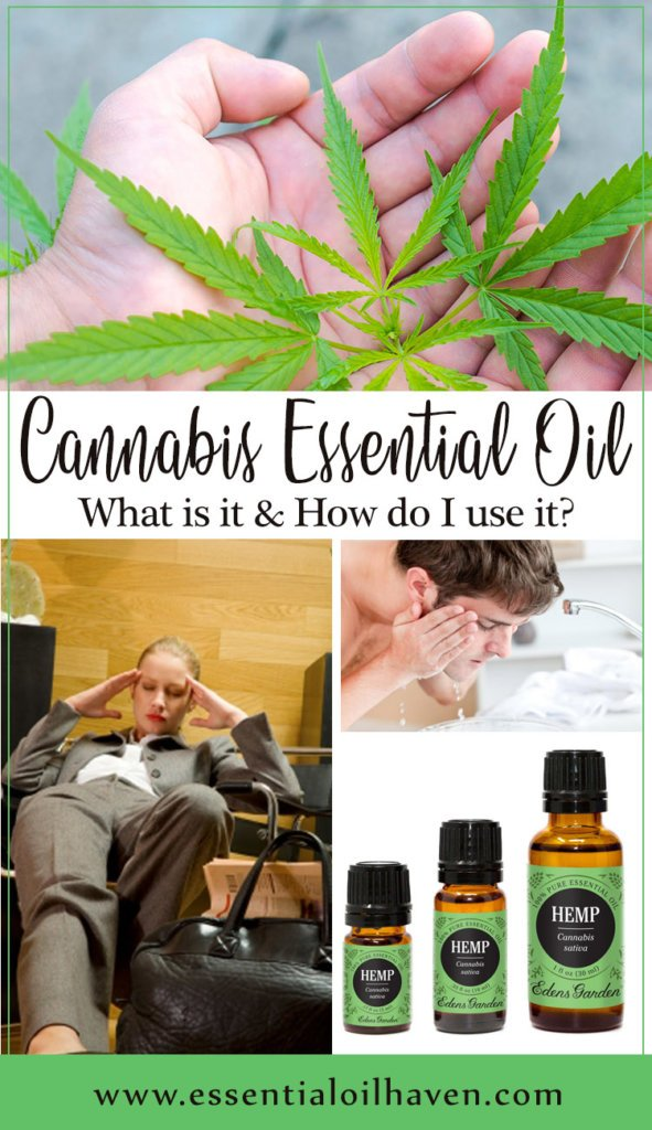 cannabis essential oil benefits and uses