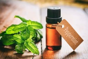 peppermint essential oil for natural allergy relief