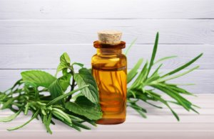 tea tree essential oil for allergy relief