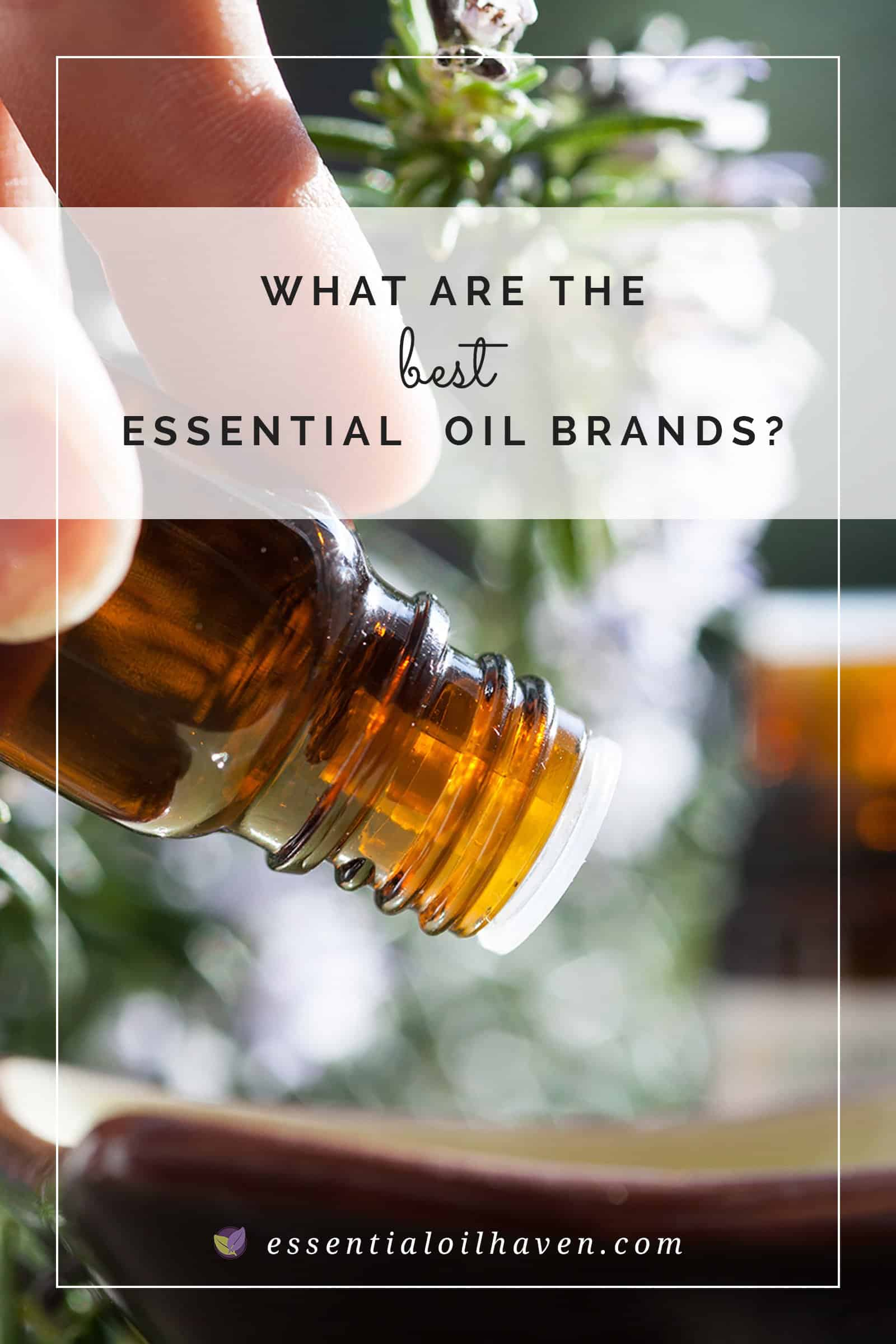 best essential oil brand reviews