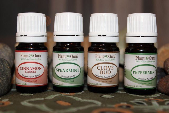 plant guru essential oils