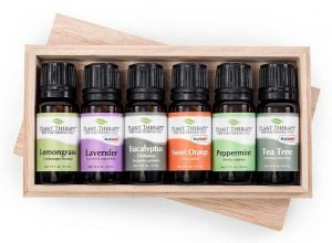 Plant Therapy Essential Oils Gift Set #1