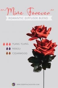 valentine's day diffuser blend recipe