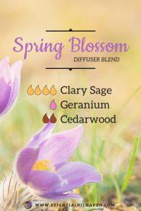 Spring Blossom Diffuser Blend
