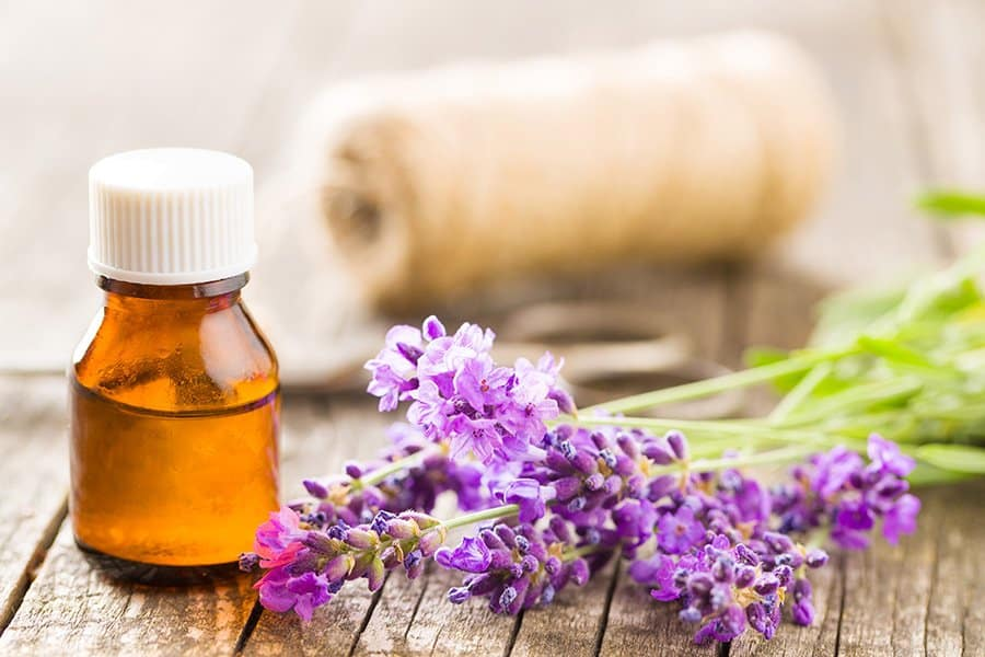 lavender essential oil blend