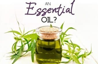 is CBD oil an essential oil for aromatherapy