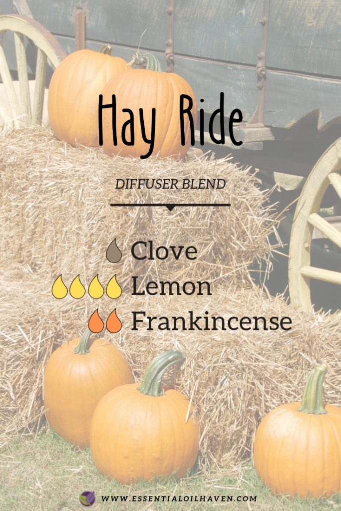 fall diffuser blend hay ride
