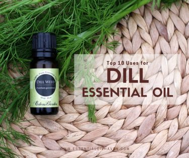 top 10 dill essential oil benefits