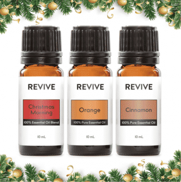 holiday essential oils kit