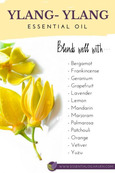 how to blend ylang ylang essential oil