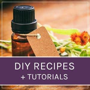recipes and tutorials